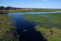 Three Lakes Wildlife Management Area, Kenansville, United States