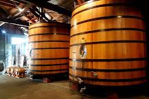 Church Road Winery Cellar Door, Napier, New Zealand