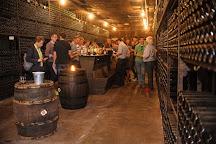 Winery Robbers & Van Den Hoogen, Arnhem, The Netherlands