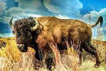 Great Plains Nature Center, Wichita, United States