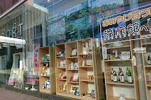 Himeji City Visitor Center, Himeji, Japan