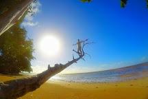 Morere, Ilha de Boipeba, Brazil