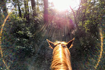 Equine Adventures, Frisco, United States