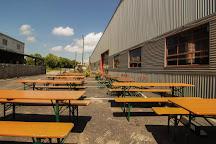 Blue Stallion Brewing Company, Lexington, United States
