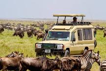 Jossec Tours and Safaris, Nairobi, Kenya