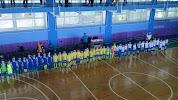 Спортивный комплекс Дальневосточного федерального университета, Пушкинская улица на фото Владивостока