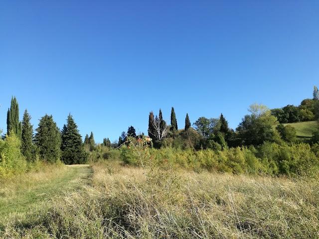 Area Sosta Camper - Ca' Vecchia