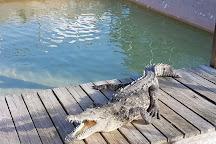Wooten's Everglades Airboat Tour, Ochopee, United States