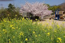 Togagawa Park, Kobe, Japan