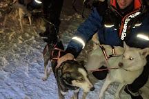 Soulmate Huskies, Pello, Finland