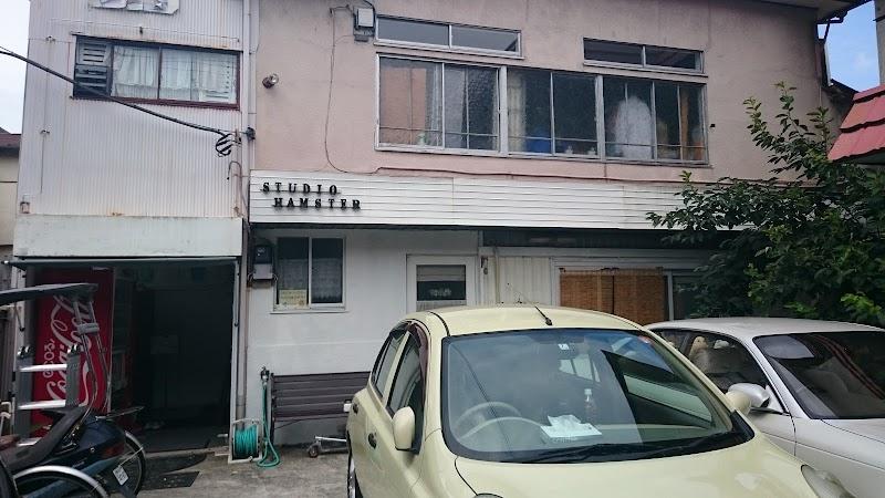 スタジオハムスター 3&5匹目!
