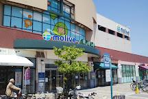 Molive, Moriyama, Japan