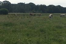 Landgoed Huis ter Heide, De Moer, The Netherlands