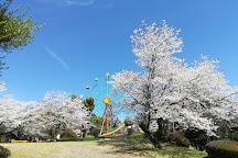 Kannonike Park, Miyakonojo, Japan