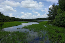 McKethan Lake Nature Trail, Brooksville, United States