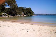 Collins Flat Beach, Manly, Australia