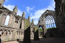 Holyrood Abbey, Edinburgh, United Kingdom