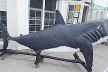 Roundhouse Marine Studies Lab and Aquarium, Manhattan Beach, United States