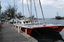 El Tigre Catamaran Sailing Cruises, Bridgetown, Barbados