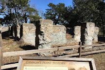 Cannon's Point Preserve, Saint Simons Island, United States
