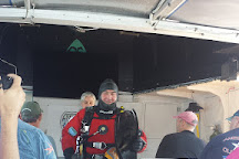 Diver Ed's Dive-In Theater, Bar Harbor, United States