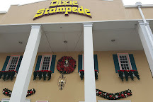 Dolly Parton's Stampede Dinner Attraction, Branson, United States