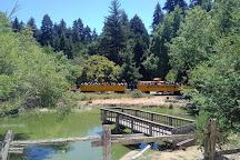 Roaring Camp Railroads, Santa Cruz, United States