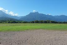 Pico Bonito National Park, La Ceiba, Honduras