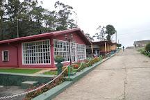 Ambewela Farms, Nuwara Eliya, Sri Lanka