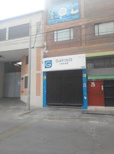 Gavino Image 0