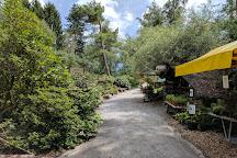 Park Seleger Moor, Rifferswil, Switzerland