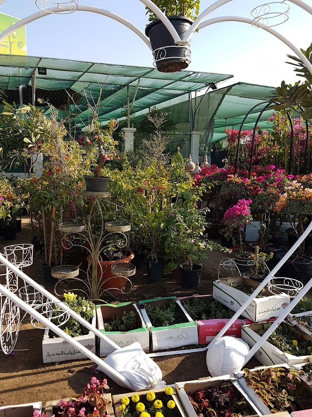 Plant Souk Dubai