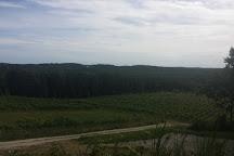 Petite Riviere Vineyards, Crousetown, Canada