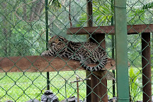 Monkey Park, Tamarindo, Costa Rica