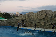 Batumi Dolphinarium, Batumi, Georgia