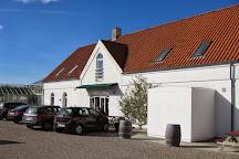 Glenholm Vingard, Ranum, Denmark