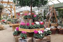Taverham Garden Centre, Taverham, United Kingdom