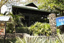 Revive Wellness Center at Langosta Beach Club, Tamarindo, Costa Rica