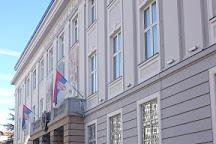 Matica Srpska Gallery, Novi Sad, Serbia