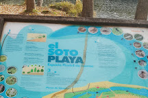 Soto Playa, Soria, Spain