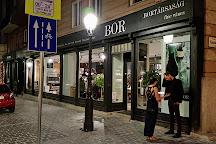 Bortarsasag - Lanchid, Budapest, Hungary
