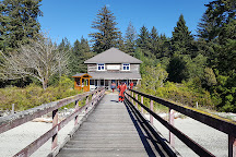 Campbell River Whale Watching and Adventure Tours, Campbell River, Canada