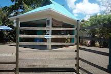 Mauritius Aquarium, Pointe Aux Piments, Mauritius