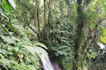 Parc des Mamelles, le Zoo de Guadeloupe, Bouillante, Guadeloupe