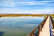 Laguna de Fuente Piedra, Andalucia, Spain