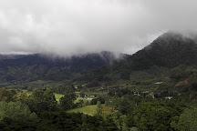 Volcan Baru National Park, Boquete, Panama