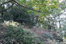 St Catherine's Woods, Jersey, United Kingdom
