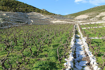 Marlais Winery, Ston, Croatia