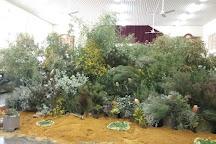 Mullewa Community Resource Centre, Mullewa, Australia