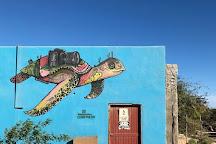 Cabo Pulmo Sport Center, Cabo Pulmo, Mexico